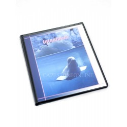 Fotoalbum salvaspazio x 80 foto a tasche 10x15 cm, 2 foto per pagina nera, 1 pz.