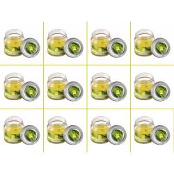 Set 12 Candele Profumate alla Citronella in Vetro 6X6 Durata Ogni Vasetto 16h Antizanzare per Esterno