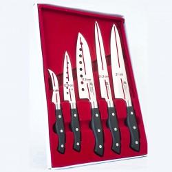 Set di 5 Coltelli da Cucina in Acciaio Inox.